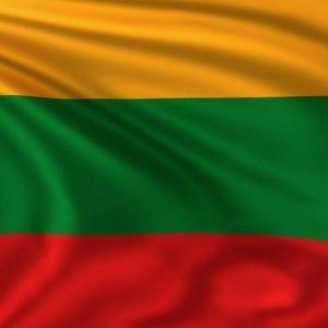 Lietuvos valstybinė vėliava 100x170 su kišenę ir raišteliais, kaina 13,22eur be PVM